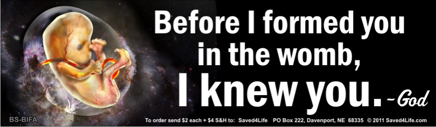 Before I Formed You in the Womb I Knew You Bumper Sticker