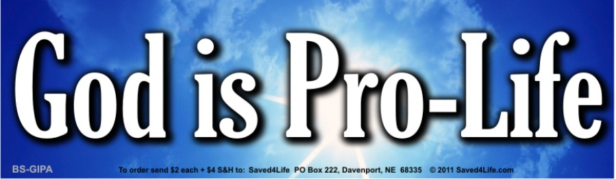 God is Pro-Life Bumper Sticker 3.5x12 Bumper Sticker