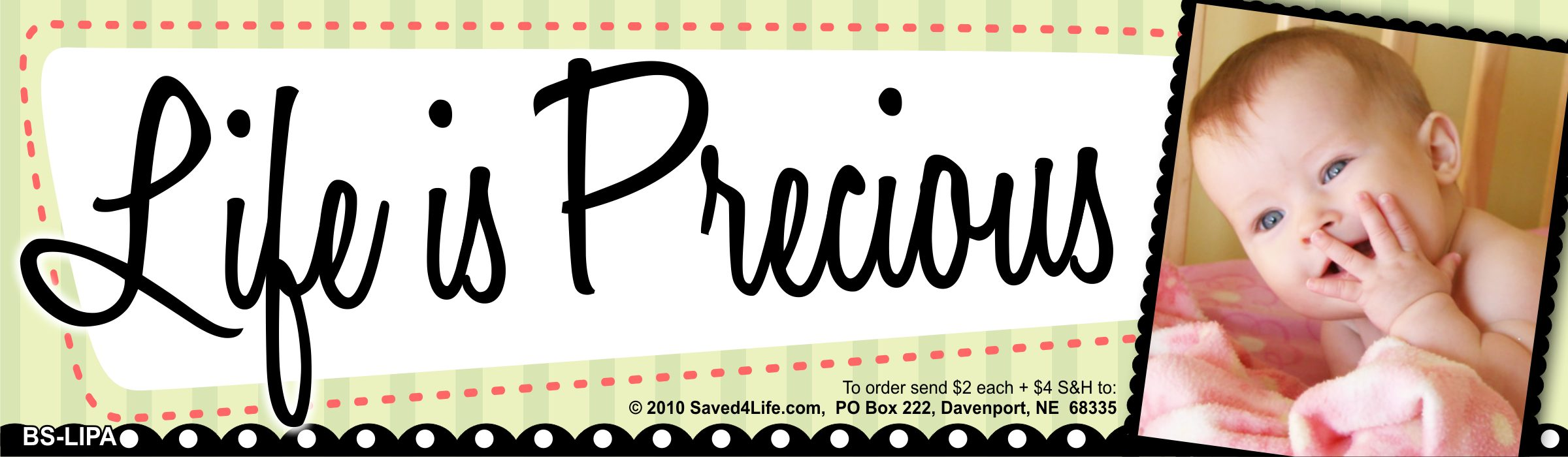 Life is Precious 3.5x12 Bumper Sticker