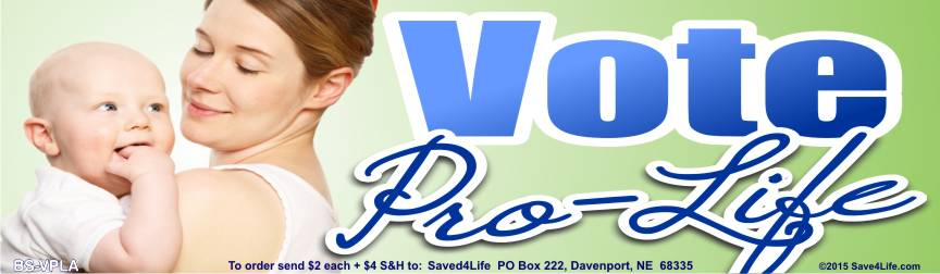 Vote Pro Life (Mom & Babe) 3.5x12 Bumper Sticker