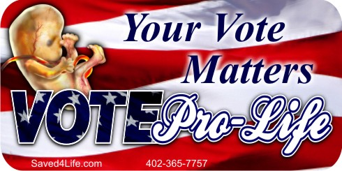 Your Vote Matters (Fetus) 3.5 x 12 Bumper Sticker
