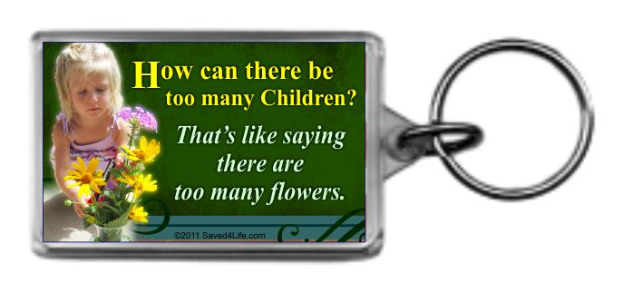 How Can There Be Too Many Children? 1.25x2 Keychain - Click Image to Close