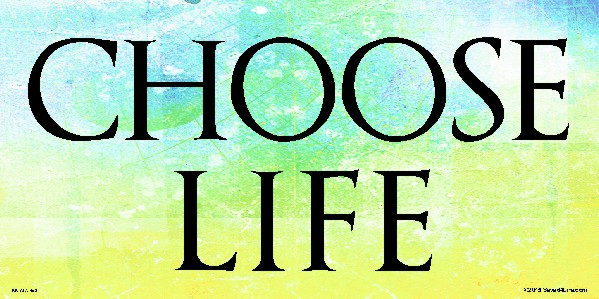 Choose Life 4 x 8 Vinyl Banner - Click Image to Close