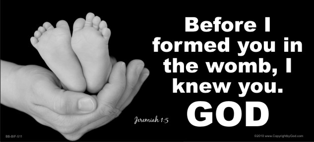 Before I Formed You in the Womb (Feet) 3 1/2 x 12 Bumper Sticker