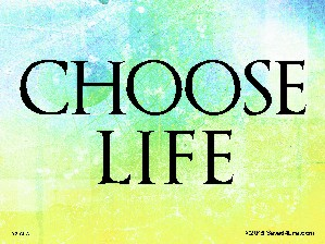 Choose Life Yard Sign 18x24
