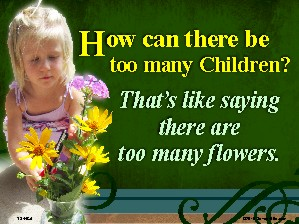 How Can There Be Too Many Children Yard Sign 18x24