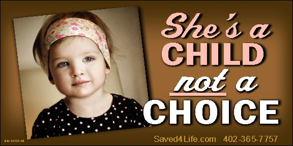 She's A Child Not A Choice 4 x 8 Vinyl Banner