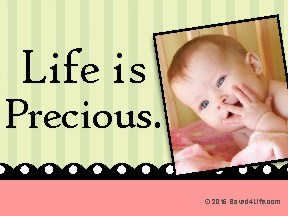 Life Is Precious Yard Sign 18x24